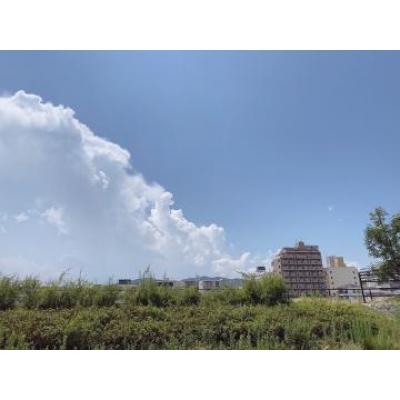 広島デリヘル風俗 BlueSapphire(ブルーサファイア)写メ日記:みほの投稿「いますw」